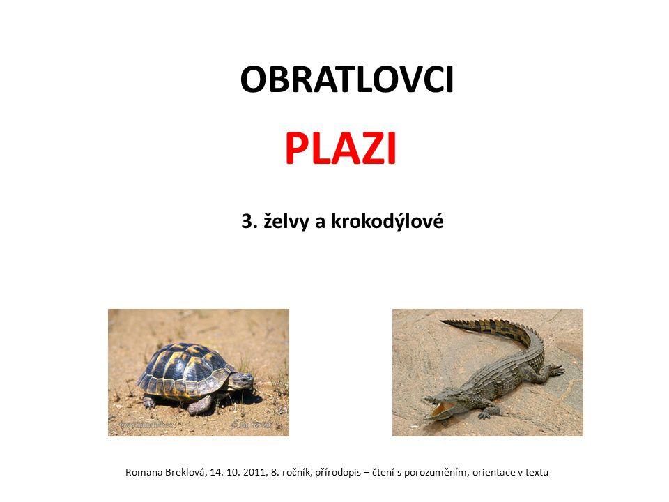 OBRATLOVCI PLAZI 3. želvy a krokodýlové Romana Breklová, 14. 10. 2011, 8. ročník, přírodopis – čtení s porozuměním, orientace v textu