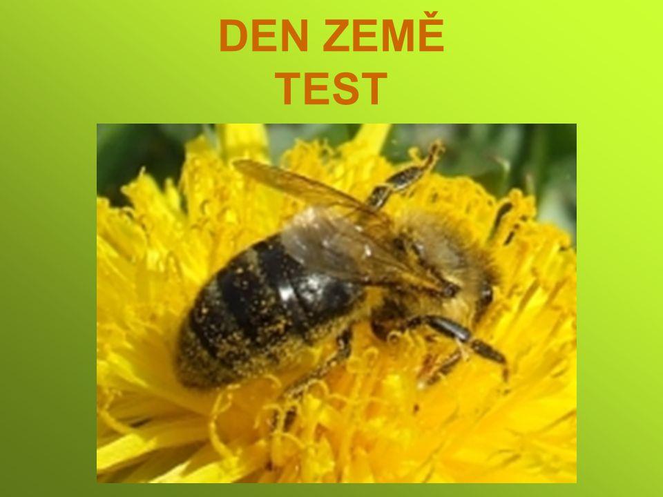 DEN ZEMĚ TEST