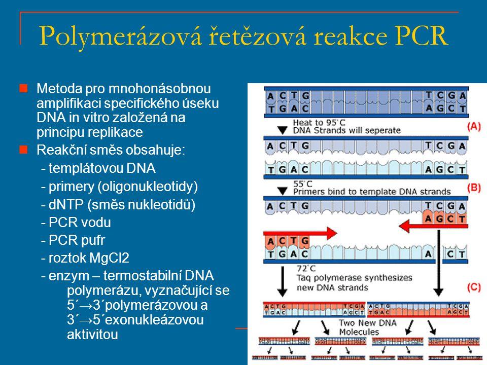 Polymerázová řetězová reakce PCR Metoda pro mnohonásobnou amplifikaci specifického úseku DNA in vitro založená na principu replikace Reakční směs obsa