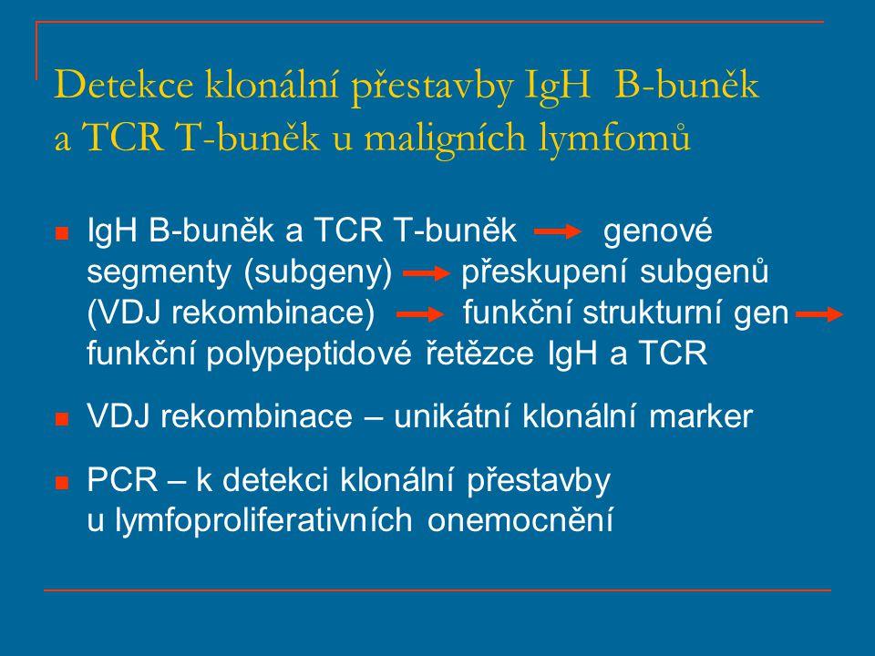 Stanovení klonality B-buněk + + + + ++++++ + FR1FR2FR3 --- 100 bp 200 bp 300 bp DNA MARKER 500 bp monoklonální band