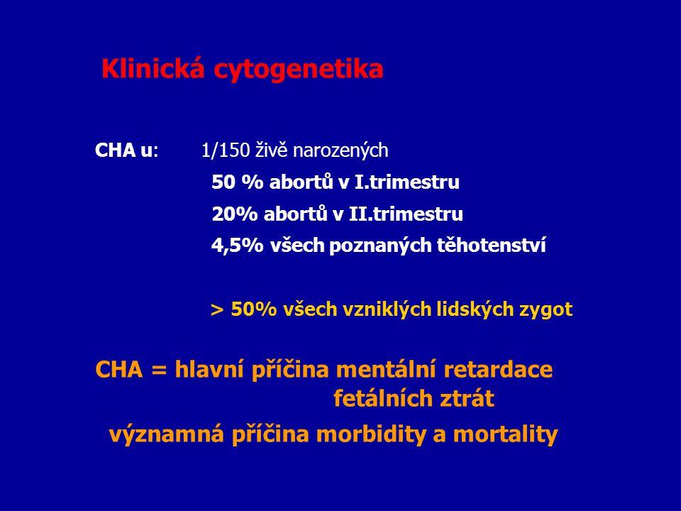 Klinická cytogenetika CHA u: 1/150 živě narozených 50 % abortů v I.trimestru 20% abortů v II.trimestru 4,5% všech poznaných těhotenství > 50% všech vz