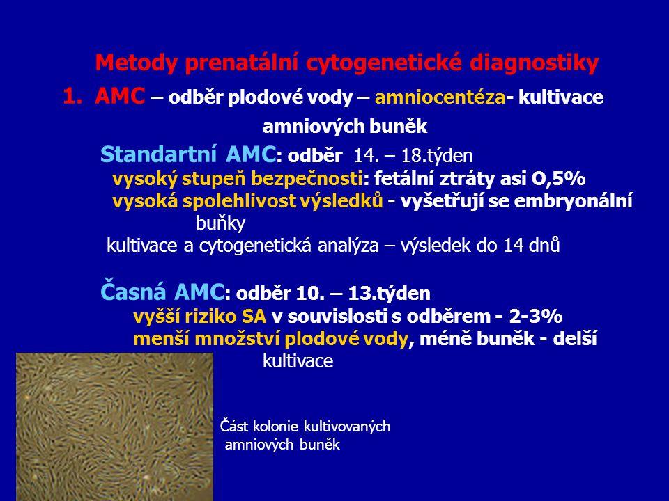 Metody prenatální cytogenetické diagnostiky 1.AMC – odběr plodové vody – amniocentéza- kultivace amniových buněk Standartní AMC : odběr 14. – 18.týden