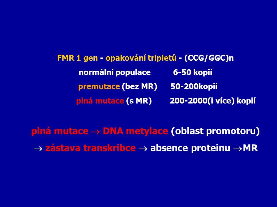 FMR 1 gen - opakování tripletů - (CCG/GGC)n normální populace 6-50 kopií premutace (bez MR) 50-200kopií plná mutace (s MR) 200-2000(i více) kopií plná
