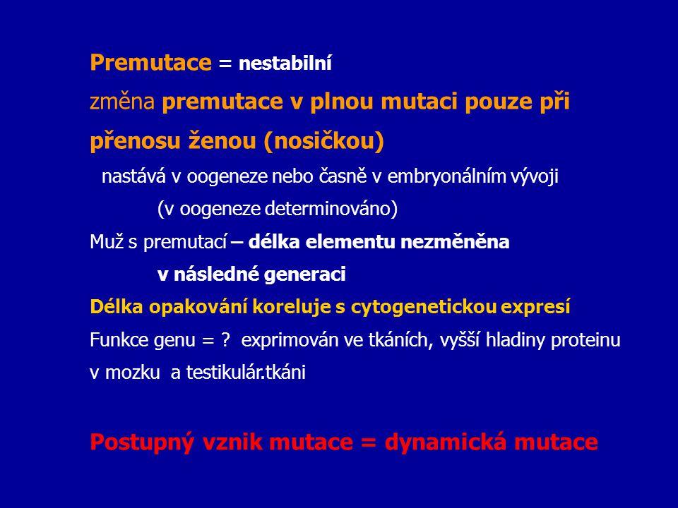 Premutace = nestabilní změna premutace v plnou mutaci pouze při přenosu ženou (nosičkou) nastává v oogeneze nebo časně v embryonálním vývoji (v oogene