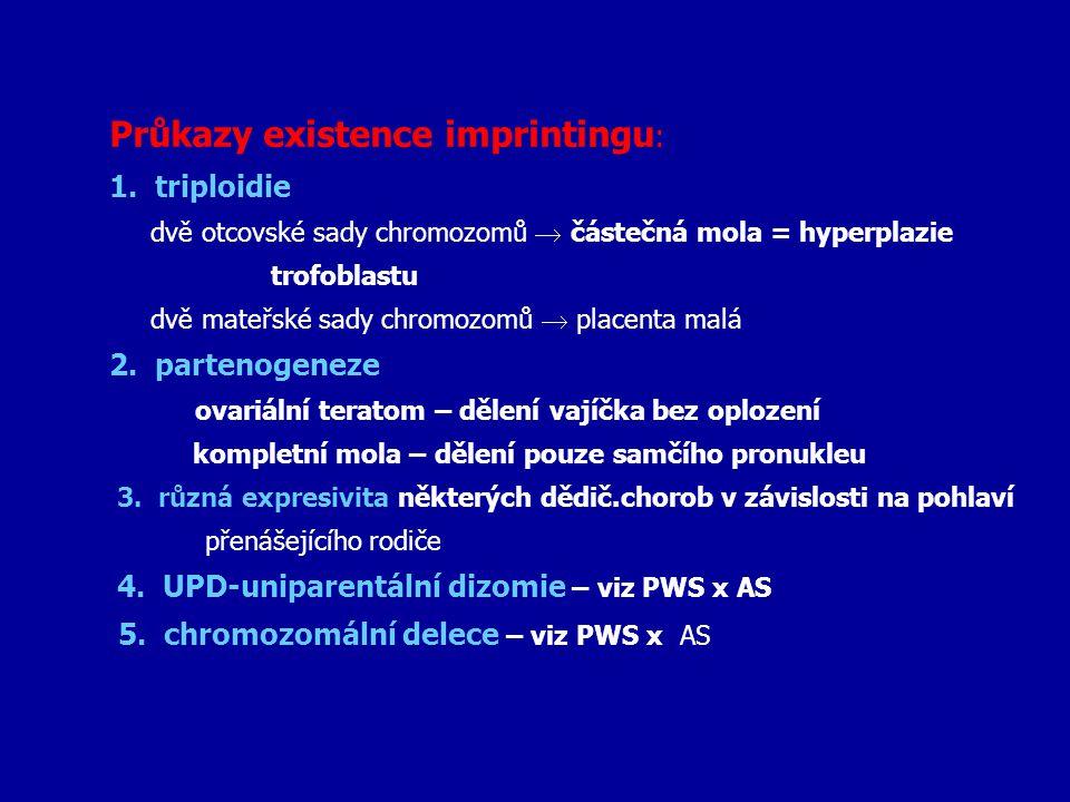Průkazy existence imprintingu : 1. triploidie dvě otcovské sady chromozomů  částečná mola = hyperplazie trofoblastu dvě mateřské sady chromozomů  pl