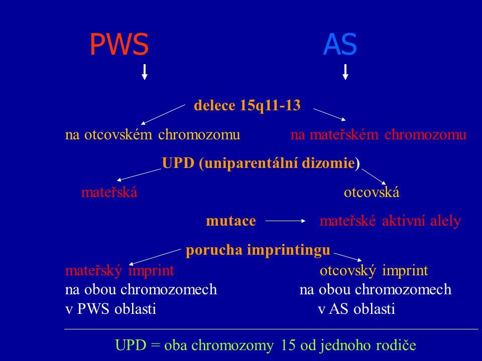 PWS AS delece 15q11-13 na otcovském chromozomu na mateřském chromozomu UPD (uniparentální dizomie) mateřská otcovská mutace mateřské aktivní alely por