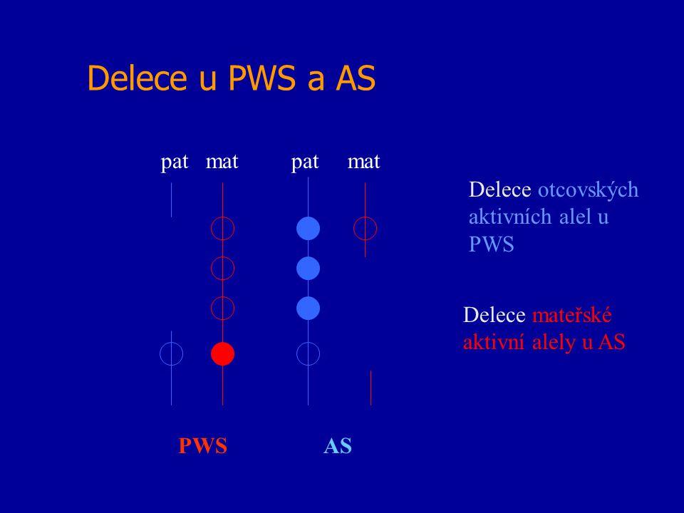 Delece u PWS a AS pat mat PWS AS Delece otcovských aktivních alel u PWS Delece mateřské aktivní alely u AS