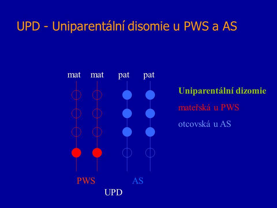 UPD - Uniparentální disomie u PWS a AS mat mat pat pat UPD Uniparentální dizomie mateřská u PWS otcovská u AS PWSAS