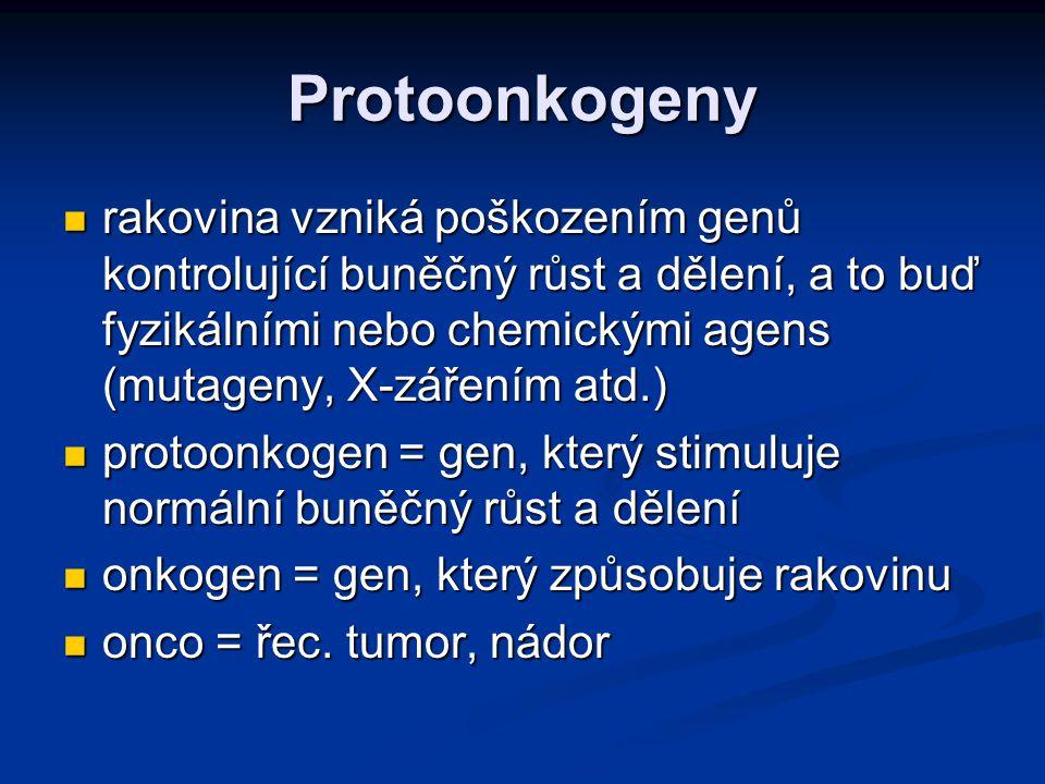 Proliferační geny Kódují proteiny důležité pro růst a diferenciaci Kódují proteiny důležité pro růst a diferenciaci Pouze jeden gen Pouze jeden gen Normálně je označován jako protoonkogen Normálně je označován jako protoonkogen V případě jejich abnormální aktivace - chybná exprese nebo jejich kvalitativní změna – mutace – onkogeny V případě jejich abnormální aktivace - chybná exprese nebo jejich kvalitativní změna – mutace – onkogeny