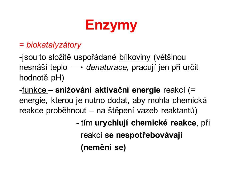 Enzymy = biokatalyzátory -jsou to složitě uspořádané bílkoviny (většinou nesnáší teplo denaturace, pracují jen při určit hodnotě pH) -funkce – snižová