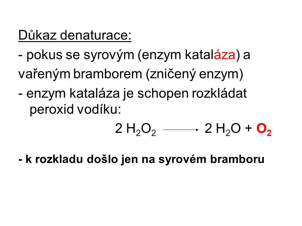 Důkaz denaturace: - pokus se syrovým (enzym kataláza) a vařeným bramborem (zničený enzym) - enzym kataláza je schopen rozkládat peroxid vodíku: 2 H 2