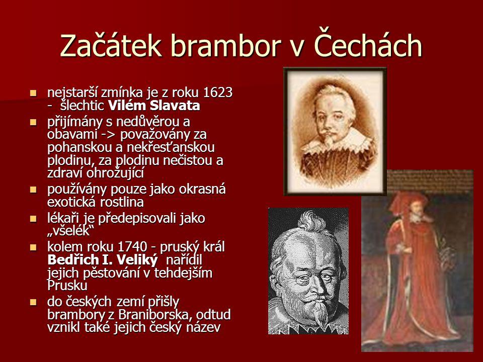 """Začátek brambor v Čechách nejstarší zmínka je z roku 1623 - šlechtic Vilém Slavata nejstarší zmínka je z roku 1623 - šlechtic Vilém Slavata přijímány s nedůvěrou a obavami -> považovány za pohanskou a nekřesťanskou plodinu, za plodinu nečistou a zdraví ohrožující přijímány s nedůvěrou a obavami -> považovány za pohanskou a nekřesťanskou plodinu, za plodinu nečistou a zdraví ohrožující používány pouze jako okrasná exotická rostlina používány pouze jako okrasná exotická rostlina lékaři je předepisovali jako """"všelék lékaři je předepisovali jako """"všelék kolem roku 1740 - pruský král Bedřich I."""