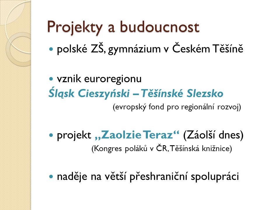 Projekty a budoucnost polské ZŠ, gymnázium v Českém Těšíně vznik euroregionu Śląsk Cieszyński – Těšínské Slezsko (evropský fond pro regionální rozvoj)