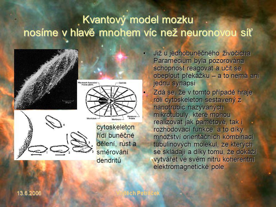 13.6.2006Vojtěch Petráček Kvantový model mozku nosíme v hlavě mnohem víc než neuronovou síť Již u jednobuněčného živočicha Paramecium byla pozorována schopnost reagovat a učit se obeplout překážku – a to nemá ani jednu synapsiJiž u jednobuněčného živočicha Paramecium byla pozorována schopnost reagovat a učit se obeplout překážku – a to nemá ani jednu synapsi Zdá se, že v tomto případě hraje roli cytoskeleton sestavený z nanotrubic nazývaných mikrotubuly, které mohou realizovat jak pamětové, tak i rozhodovací funkce a to díky množství orientačních kombinací tubulinových molekul, ze kterých se skládaji a díky tomu, že dokáží vytvářet ve svém nitru koherentní elektromagnetické poleZdá se, že v tomto případě hraje roli cytoskeleton sestavený z nanotrubic nazývaných mikrotubuly, které mohou realizovat jak pamětové, tak i rozhodovací funkce a to díky množství orientačních kombinací tubulinových molekul, ze kterých se skládaji a díky tomu, že dokáží vytvářet ve svém nitru koherentní elektromagnetické pole cytoskeleton řídí buněčné dělení, růst a směrování dendritů