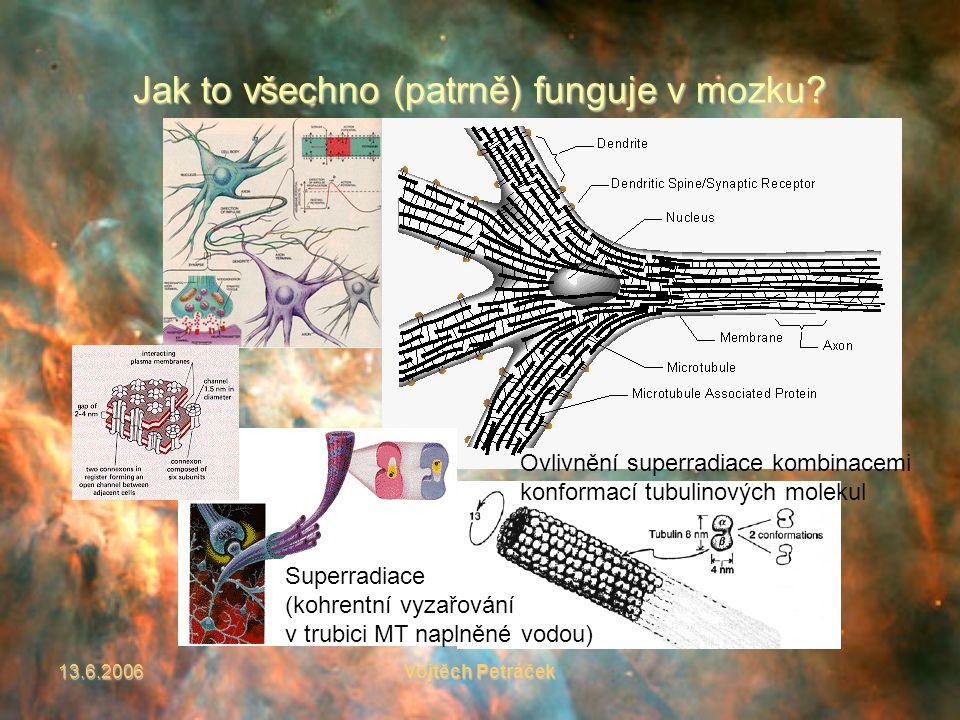 13.6.2006Vojtěch Petráček Jak to všechno (patrně) funguje v mozku.