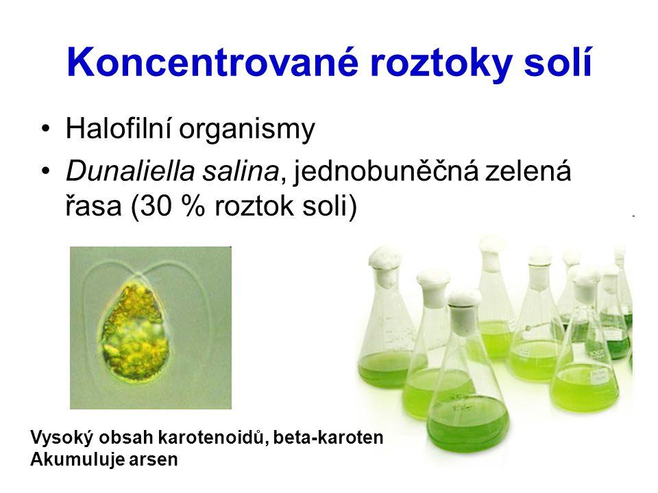 Koncentrované roztoky solí Halofilní organismy Dunaliella salina, jednobuněčná zelená řasa (30 % roztok soli) Vysoký obsah karotenoidů, beta-karoten A
