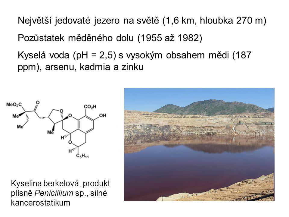 Největší jedovaté jezero na světě (1,6 km, hloubka 270 m) Pozůstatek měděného dolu (1955 až 1982) Kyselá voda (pH = 2,5) s vysokým obsahem mědi (187 p
