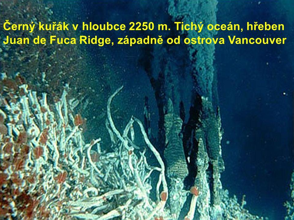 Černý kuřák v hloubce 2250 m. Tichý oceán, hřeben Juan de Fuca Ridge, západně od ostrova Vancouver