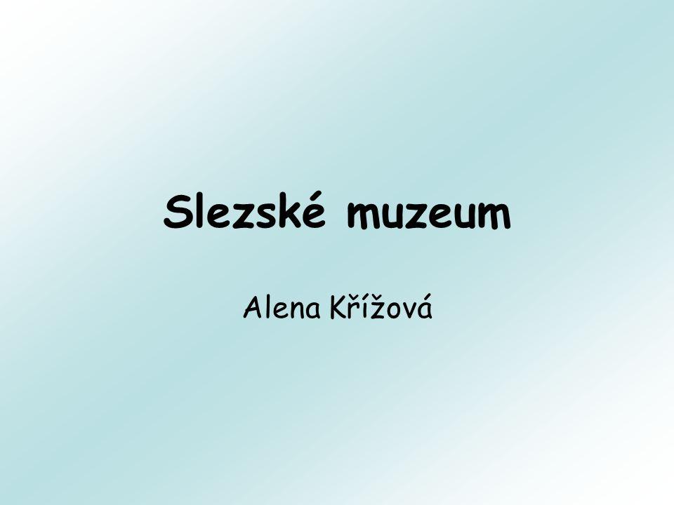 Slezské muzeum Alena Křížová