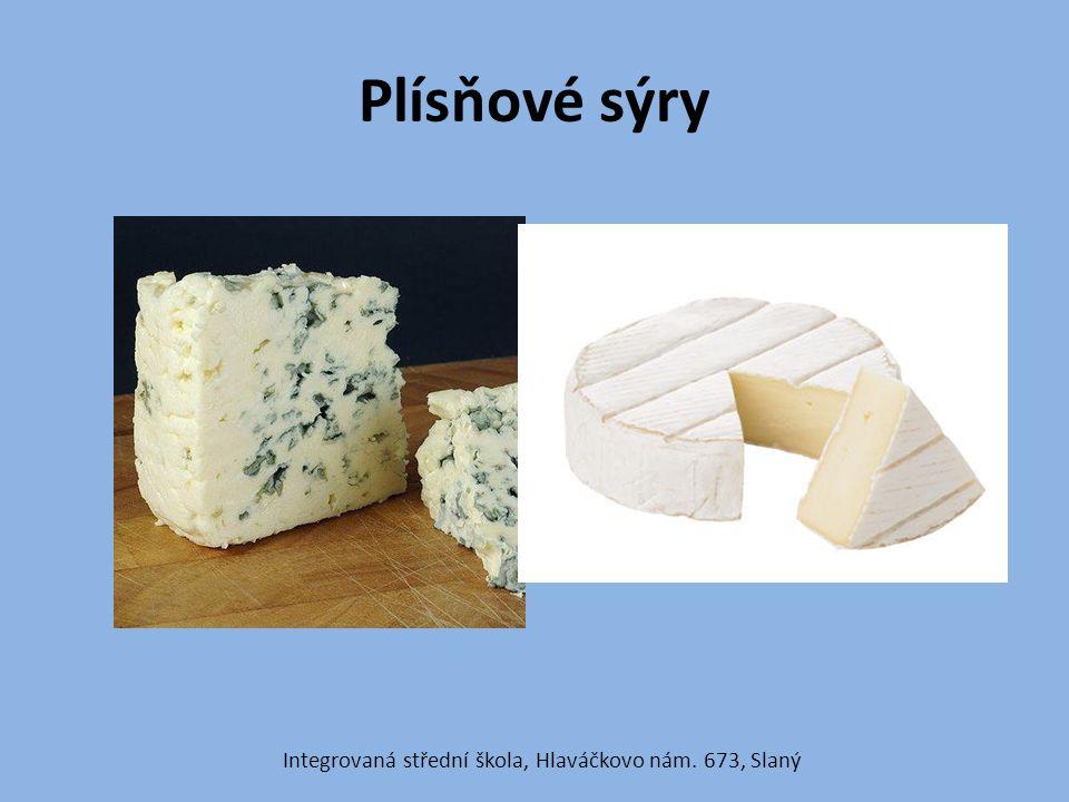 Plísňové sýry Integrovaná střední škola, Hlaváčkovo nám. 673, Slaný