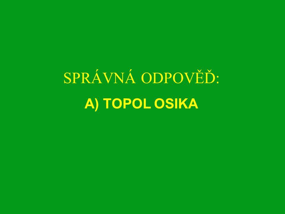 A)VRBA KŘEHKÁ B)TOPOL ČERNÝ C) TOPOL SIMONŮV