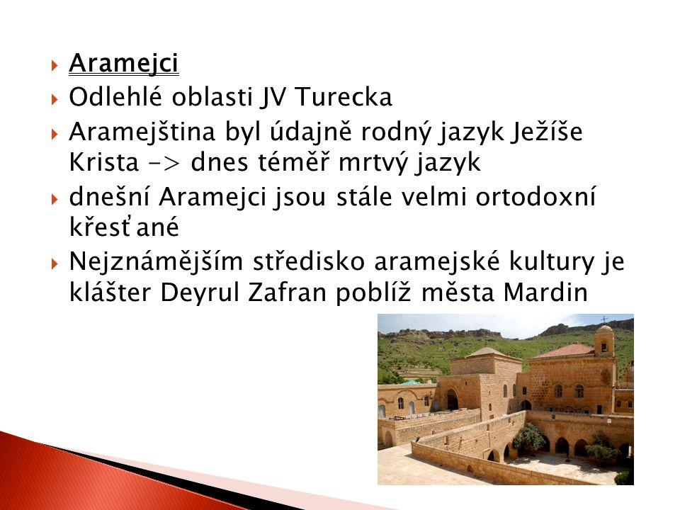  Arabové  při hranicích Sýrie žije nezanedbatelná menšina Arabů; Žijí především ve městě Sanli Urfa a okolních vesničkách  Arberešové  téměř dvoumilionová menšina  původně muslimští obyvatelé Albánie  do Turecka se vystěhovali před srbským útlakem v první polovině 20.