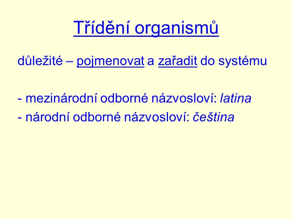 Třídění organismů důležité – pojmenovat a zařadit do systému - mezinárodní odborné názvosloví: latina - národní odborné názvosloví: čeština