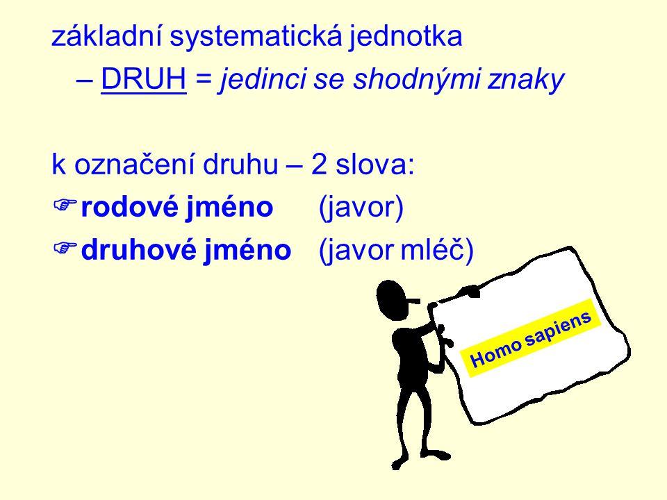 základní systematická jednotka – DRUH = jedinci se shodnými znaky k označení druhu – 2 slova:  rodové jméno(javor)  druhové jméno(javor mléč) Homo sapiens