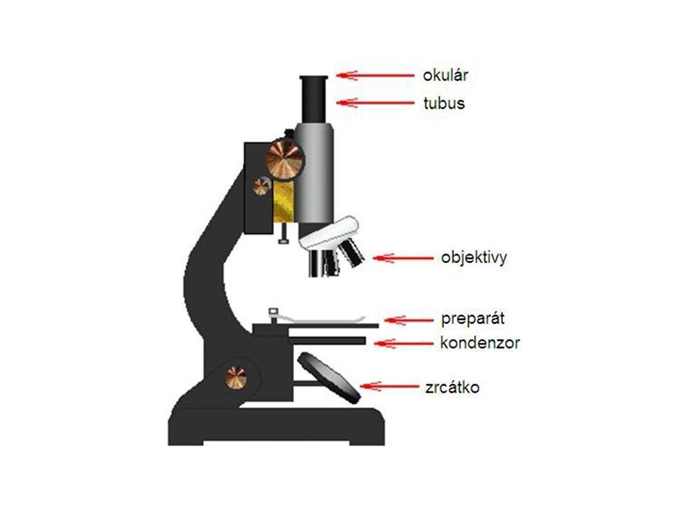 Postup při mikroskopování 1.Mikroskop dej do pracovní polohy a otočením nosiče objektivů zařaď nejméně zvětšující objektiv.