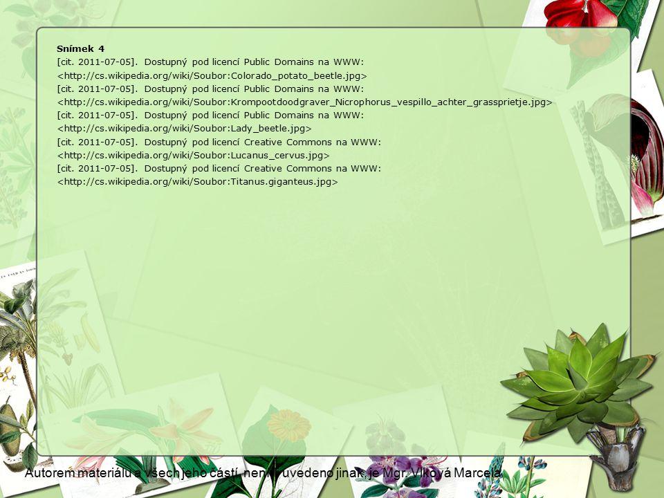Snímek 4 [cit. 2011-07-05]. Dostupný pod licencí Public Domains na WWW: [cit. 2011-07-05]. Dostupný pod licencí Public Domains na WWW: [cit. 2011-07-0