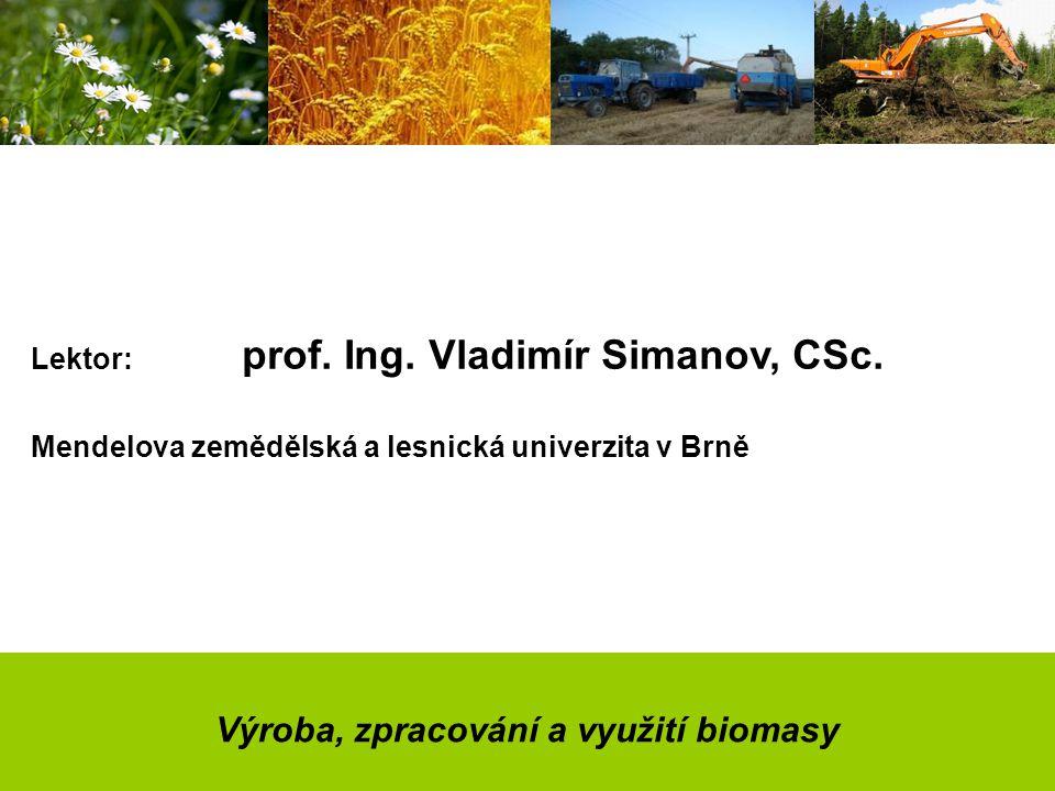 Výroba, zpracování a využití biomasy Lektor: prof.