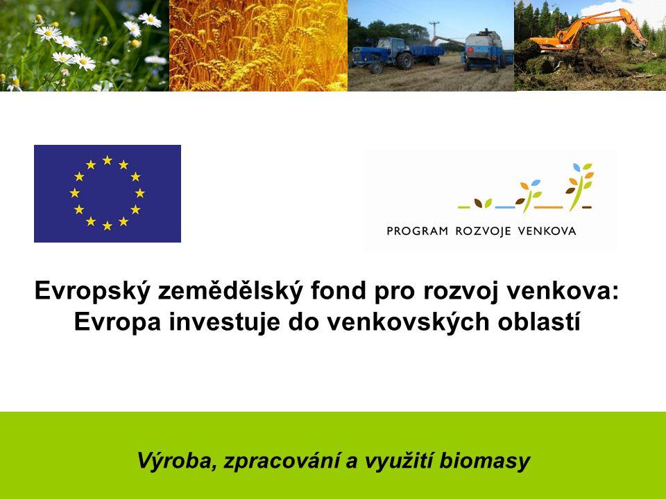 Výroba, zpracování a využití biomasy Evropský zemědělský fond pro rozvoj venkova: Evropa investuje do venkovských oblastí