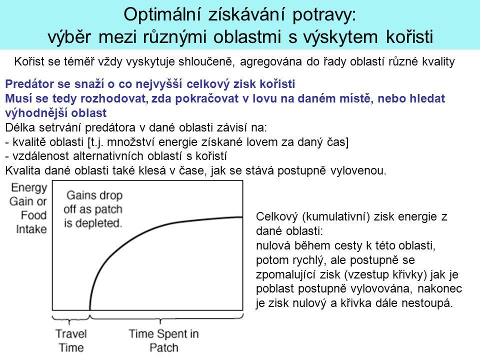 Optimální získávání potravy: výběr mezi různými oblastmi s výskytem kořisti Kořist se téměř vždy vyskytuje shloučeně, agregována do řady oblastí různé