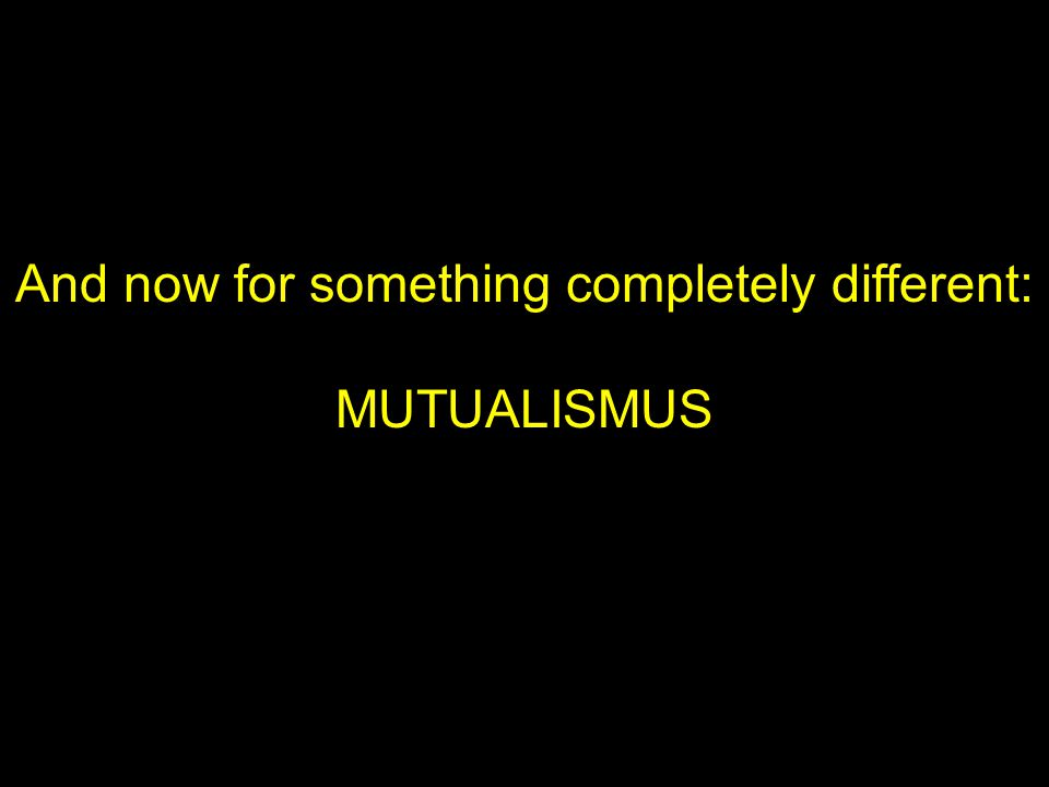 And now for something completely different: MUTUALISMUS