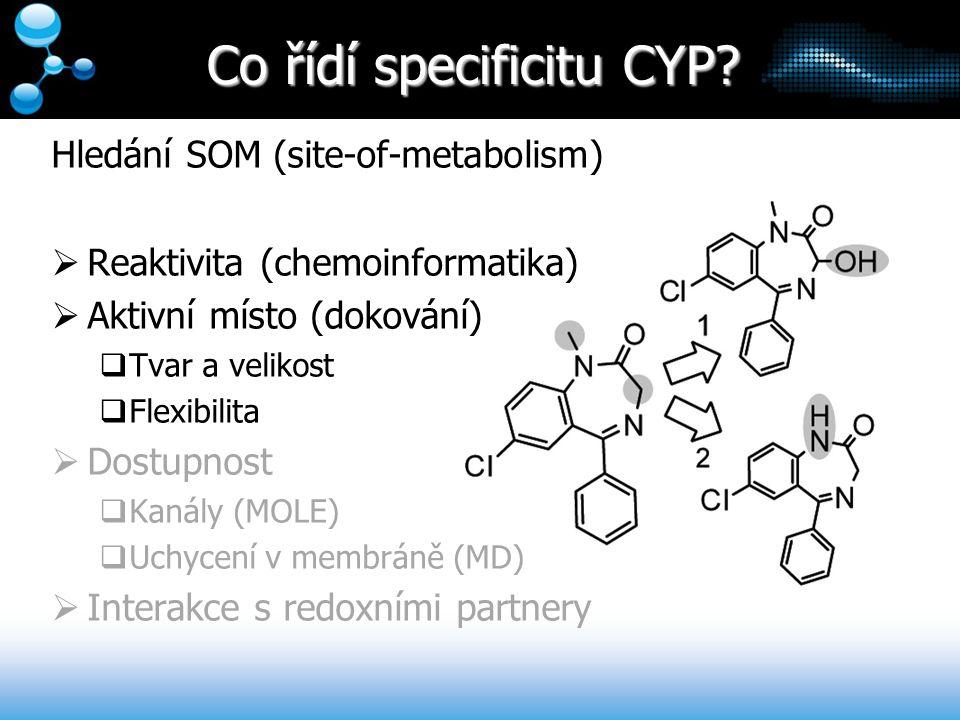Co řídí specificitu CYP? Hledání SOM (site-of-metabolism)  Reaktivita (chemoinformatika)  Aktivní místo (dokování)  Tvar a velikost  Flexibilita 