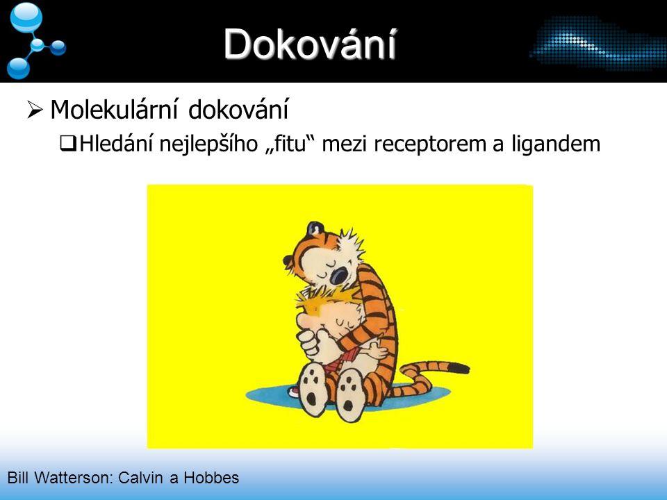 """Dokování  Molekulární dokování  Hledání nejlepšího """"fitu"""" mezi receptorem a ligandem Bill Watterson: Calvin a Hobbes"""