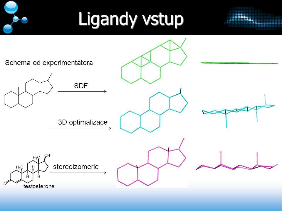 Ligandy vstup Schema od experimentátora SDF 3D optimalizace stereoizomerie testosterone