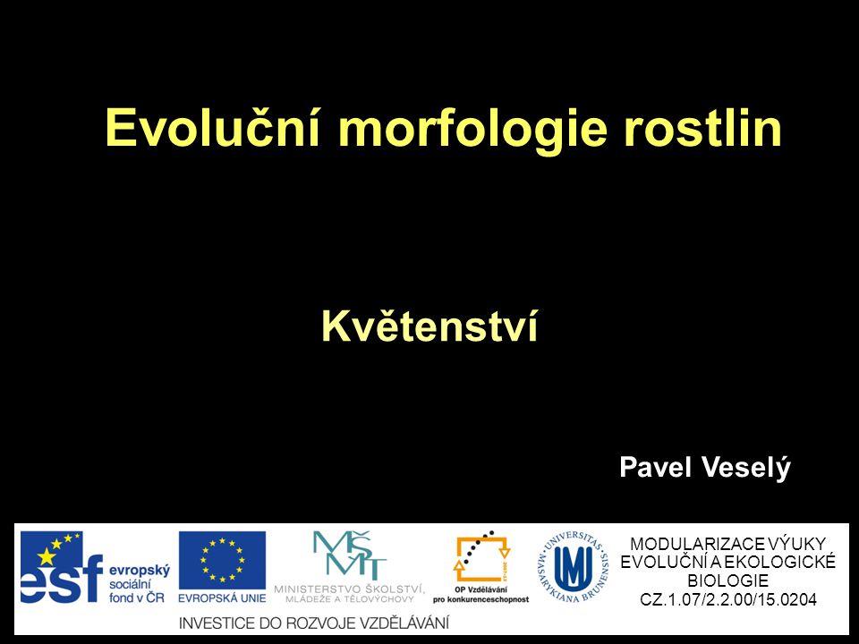 Květenství Evoluční morfologie rostlin Pavel Veselý MODULARIZACE VÝUKY EVOLUČNÍ A EKOLOGICKÉ BIOLOGIE CZ.1.07/2.2.00/15.0204