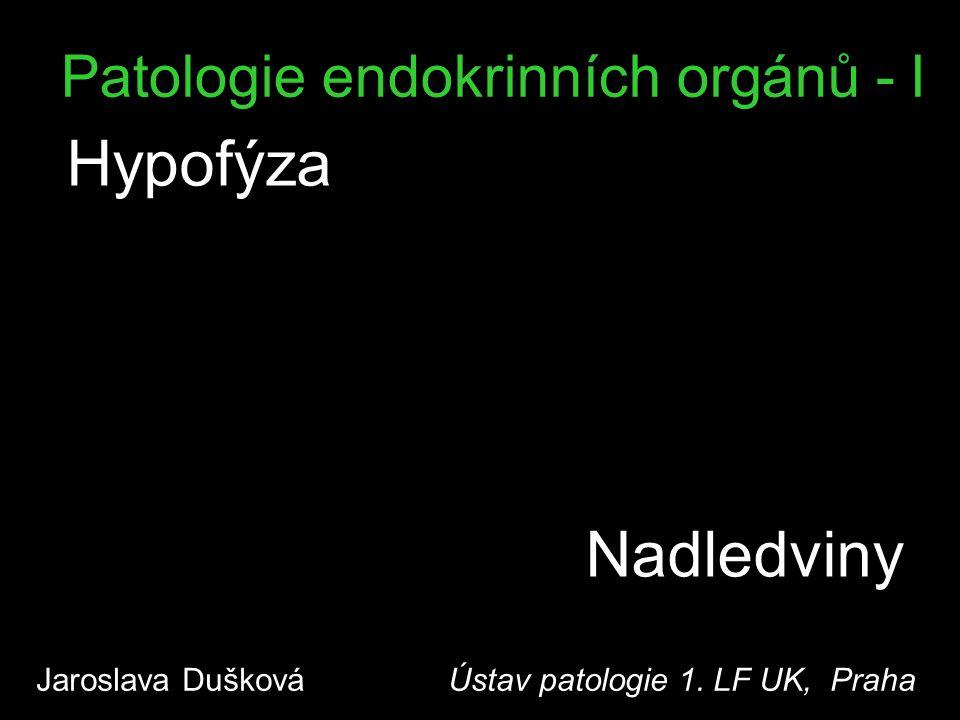 Patologie endokrinních orgánů - I Hypofýza Jaroslava Dušková Ústav patologie 1. LF UK, Praha Nadledviny