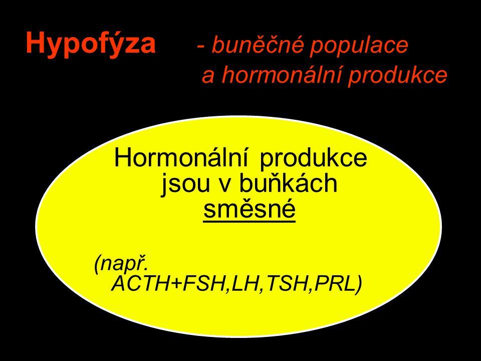 Hypofýza - buněčné populace a hormonální produkce Hormonální produkce jsou v buňkách směsné (např. ACTH+FSH,LH,TSH,PRL)