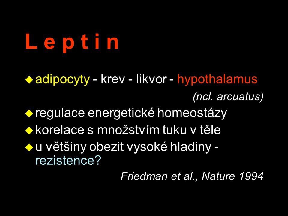 L e p t i n u adipocyty - krev - likvor - hypothalamus (ncl. arcuatus) u regulace energetické homeostázy u korelace s množstvím tuku v těle u u většin