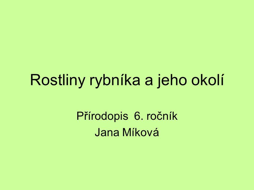 Rostliny rybníka a jeho okolí Přírodopis 6. ročník Jana Míková
