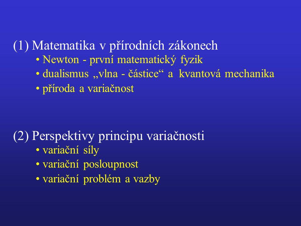 Variační posloupnost Obecná matematická teorie, zahrnující odpovědi na otázky spojené s variačním problémem jako dílčí výsledky.