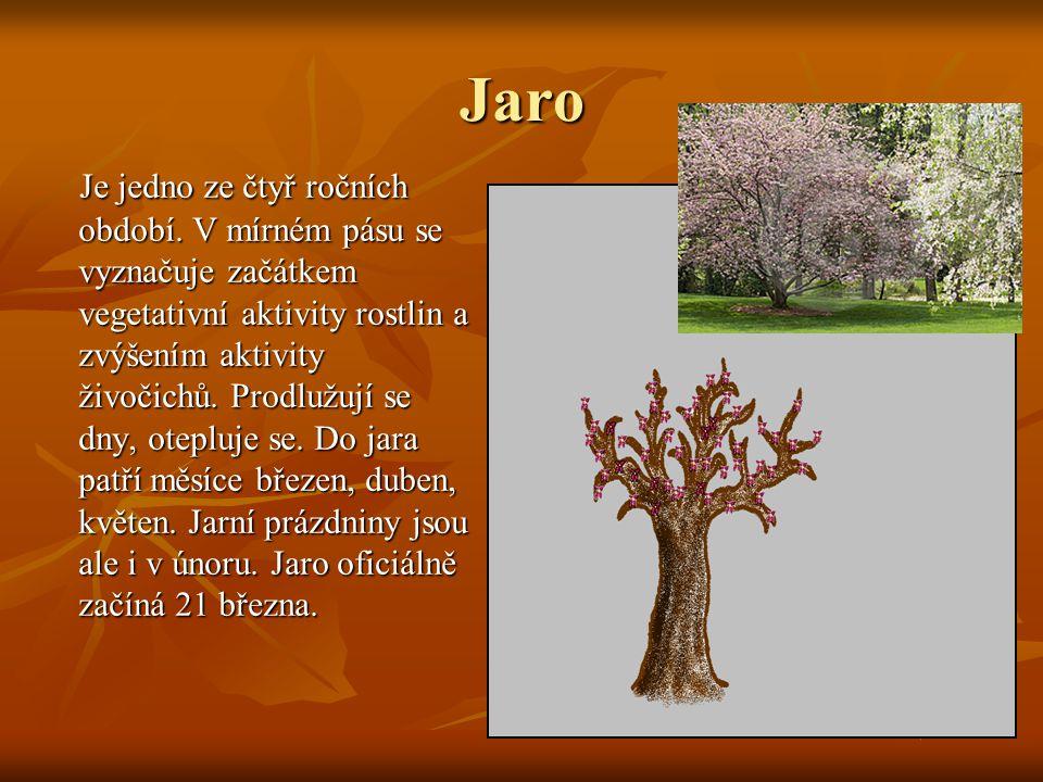 Jaro Je jedno ze čtyř ročních období. V mírném pásu se vyznačuje začátkem vegetativní aktivity rostlin a zvýšením aktivity živočichů. Prodlužují se dn