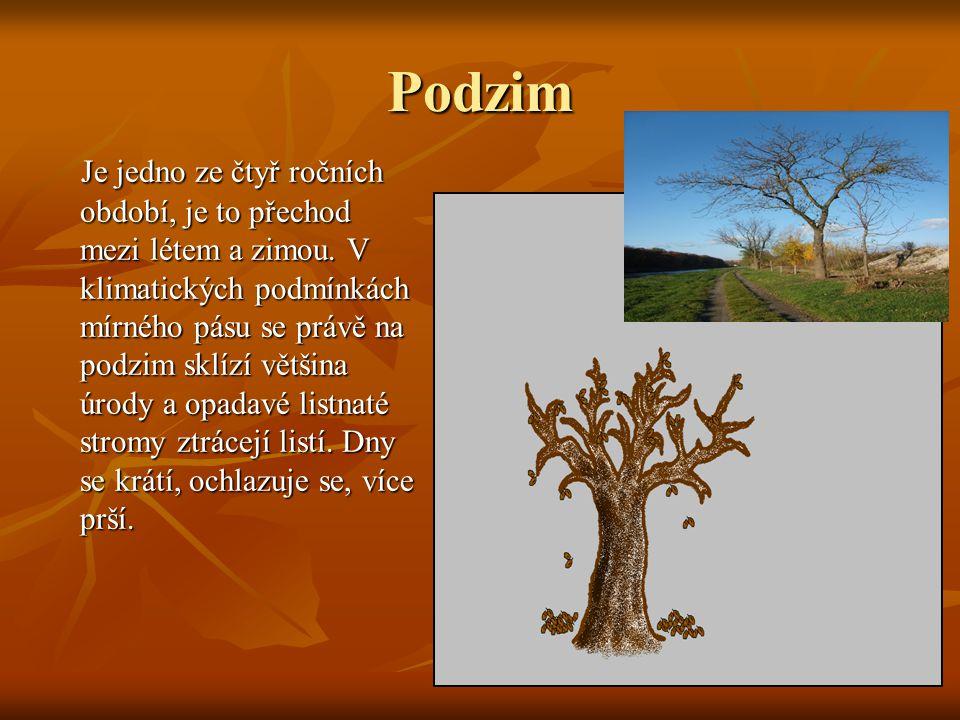 Podzim Je jedno ze čtyř ročních období, je to přechod mezi létem a zimou. V klimatických podmínkách mírného pásu se právě na podzim sklízí většina úro