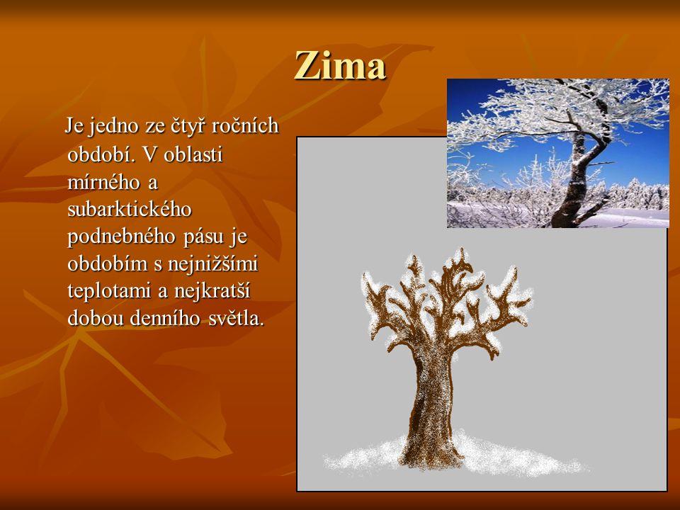 Zima Je jedno ze čtyř ročních období. V oblasti mírného a subarktického podnebného pásu je obdobím s nejnižšími teplotami a nejkratší dobou denního sv