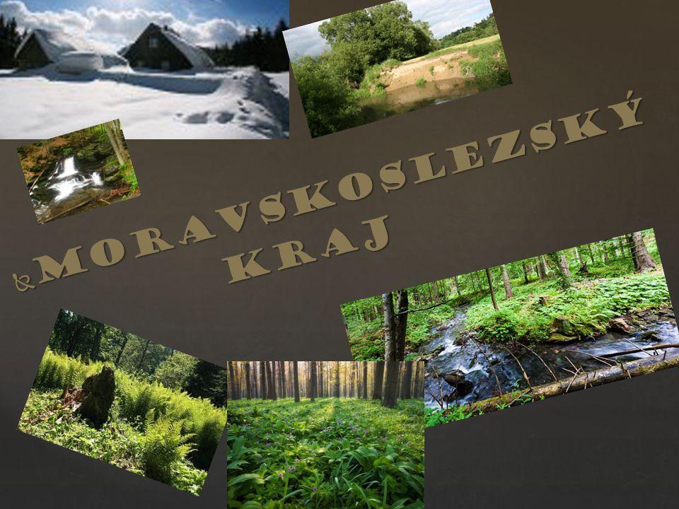  Moravskoslezský kraj kraj