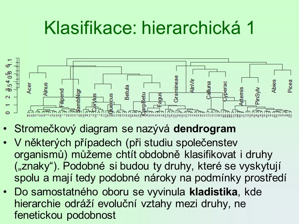 Klasifikace: hierarchická 1 Stromečkový diagram se nazývá dendrogram V některých případech (při studiu společenstev organismů) můžeme chtít obdobně kl
