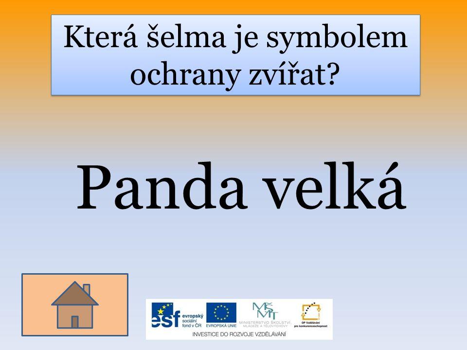 Která šelma je symbolem ochrany zvířat? Panda velká