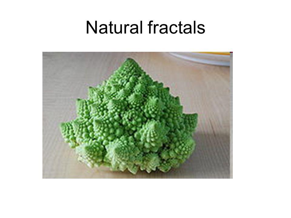 Natural fractals